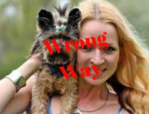 Hudson Valley Dog Fence - Wrong Way to Hold A Small Dog